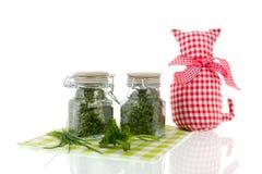 Piante aromatiche secche Immagine Stock