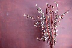Piante artificiali sulla parete porpora Fotografia Stock
