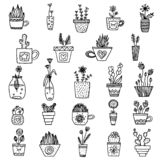 Piante in bianco e nero di vettore nella linea arte piante semplici monocromatiche in vasi messi raccolta isolata delle piante illustrazione vettoriale