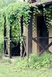 Piante, casa, porta, villaggio, natura, di legno, struttura, appendente, campagna Fotografia Stock Libera da Diritti