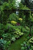 Piante del gruppo nel posto del giardino dell'ombra Fotografia Stock Libera da Diritti