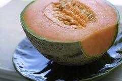 Piante del melone all'indicatore luminoso naturale Fotografia Stock Libera da Diritti