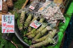 Piante del Wasabi Fotografia Stock Libera da Diritti