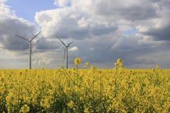 Piante di energia eolica Fotografia Stock