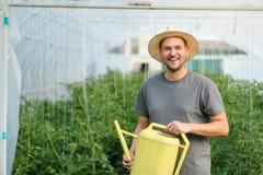 Piante di innaffiatura dell'agricoltore in una serra Fotografia Stock Libera da Diritti