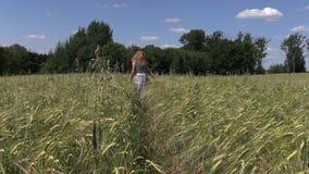 Piante di orzo della passeggiata della donna incinta nel campo agricolo Fotografie Stock