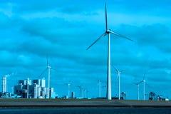 Piante e mulini a vento in Groninga Immagini Stock Libere da Diritti
