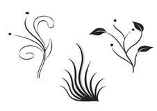 Piante ed erba Illustrazione Vettoriale