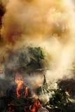 Piante, plastica che brucia causando inquinamento atmosferico fotografia stock