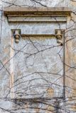 Piante striscianti dell'intonaco della struttura di struttura del fondo vecchie Immagine Stock