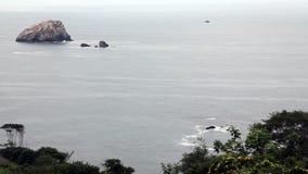 Piante sul fondo delle rocce e di Cliff Moving In Foreground Ocean video d archivio