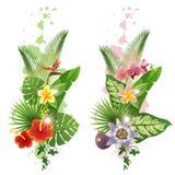 Piante tropicali Fotografia Stock Libera da Diritti