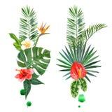 Piante tropicali dell'acquerello per le vostre progettazioni Fotografia Stock Libera da Diritti