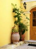 Piante in una porta a Corfù Fotografie Stock
