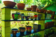 Piante in vasi da fiori fotografie stock