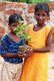 Pianti un albero, salvo l'ambiente Immagine Stock Libera da Diritti