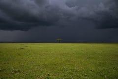 Pianura di Mara del Masai Fotografie Stock
