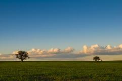 Pianura Pampeana di tramonto di Landescape fotografia stock