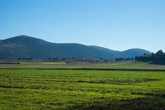 Pianure e montagne verdi intorno a Vitina, il Peloponneso, Grecia Immagini Stock Libere da Diritti