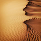 Piasek diun Maroko pustynia Zdjęcia Royalty Free