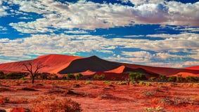 Piasek diun Namib-Naukluft park narodowy, Namibia Zdjęcia Stock
