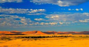 Piasek diun Namib-Naukluft park narodowy, Namibia Obrazy Royalty Free