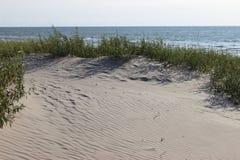 Piasek diun trawy seashore plażowy tło horyzontalny Zdjęcia Royalty Free
