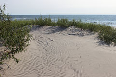 Piasek diun trawy seashore plażowy tło horyzontalny Fotografia Stock