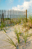 Piasek diuna i morze trawa wzdłuż ogrodzenia. Obraz Royalty Free