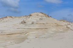 Piasek diuny na Holenderskim Północnym Dennym wybrzeżu Obraz Royalty Free