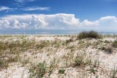 Piasek diuny na plaży Fotografia Royalty Free