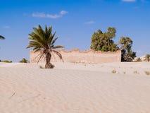 Piasek diuny w saharze blisko Douz Tunezja Afryka Obrazy Royalty Free