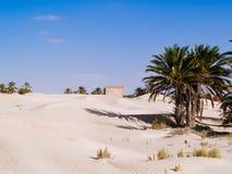 Piasek diuny w saharze blisko Douz Tunezja Afryka Obraz Stock
