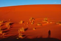 Piasek diuny w saharze, Merzouga Obraz Royalty Free