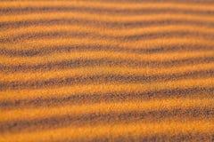 Piasek diuny w saharze w Afryka Fotografia Stock