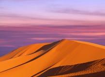 Piasek diuny w saharze w Maroko, Afryka Fotografia Royalty Free