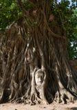 Piasek kamienny Buddha w Ayutthaya zdjęcia stock