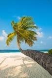 Piasek plaża i ocean fala, Południowy Męski atol Maldives Zdjęcia Stock