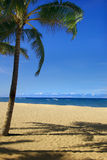 piasek plażowa scena Obrazy Stock