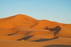 Piasek pustynne diuny Sahara Zdjęcie Stock