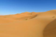 Piasek pustynne diuny Sahara Obraz Stock