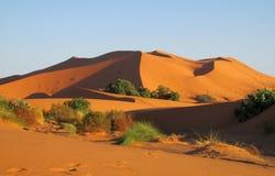 Piasek pustynne diuny Sahara Fotografia Stock