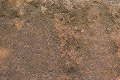 Piasek rockowa tekstura z korzeniami Tło Obraz Royalty Free