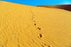 Piasek wydmowa pustynia Obraz Royalty Free