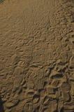 piasków kroki Zdjęcia Stock