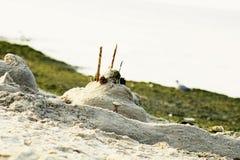 Piaska kasztel na plażowym pobliskim morzu zdjęcie stock