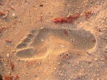 piaska ślad Zdjęcie Stock