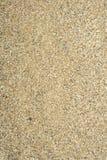 piaska morze Obrazy Royalty Free