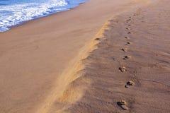 Piaska odcisku stopy ślad na Pustej plaży Obok oceanu Fotografia Stock