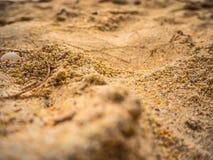 Piaska wzór plaża w lecie Zdjęcia Royalty Free